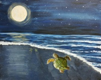 Turtles by Moonlight