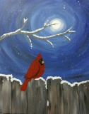 Winter Moonlit Cardinal