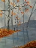 Fall -Foggy Fall Day